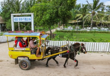 Horse carts around Gili T Indonesia