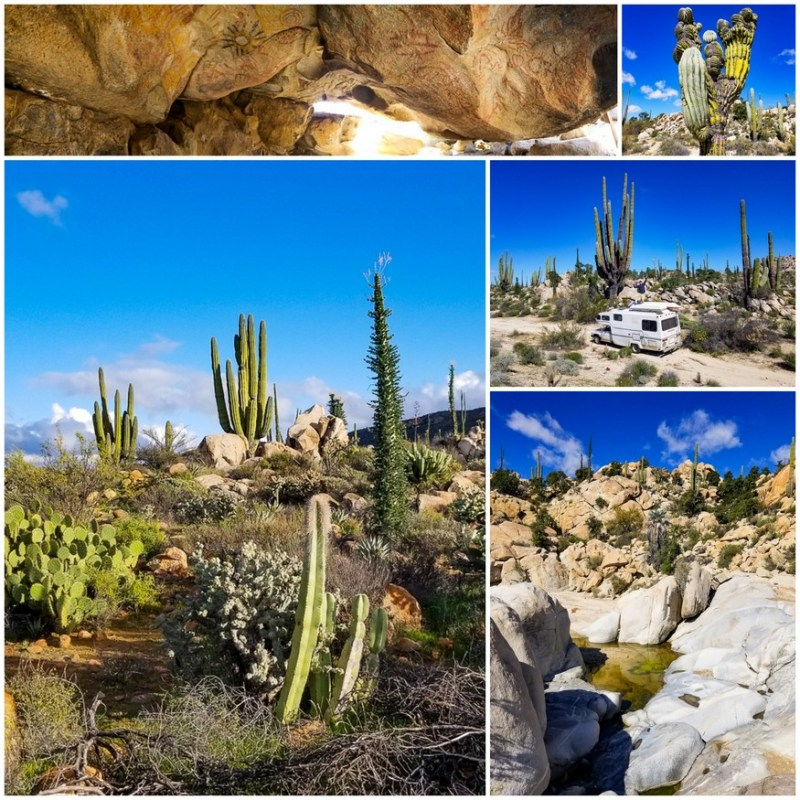 Desierto Central Mexico
