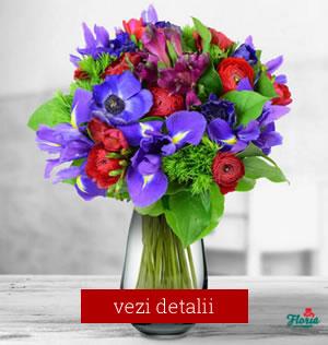 Buchet de flori pentru 8 martie cu frezii si iris