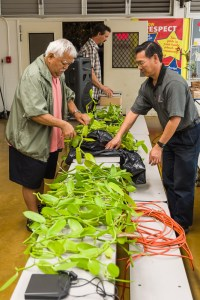 Calvin Abe and Bradley Lau cut a vanilla vine brought by Ronald Yamanaka.  The cuttings were given to attendees to grow at home.