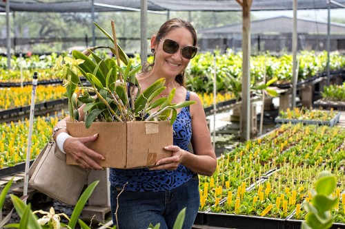 It is not unusual to leave the nurseries with boxes full of plants.