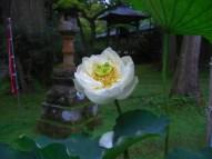 p_shikinoyama0908_06b