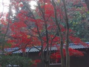 p_shikinoyama0911_10b
