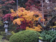 p_shikinoyama1111_04b