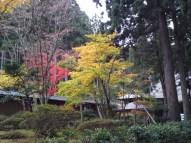 p_shikinoyama1111_06b