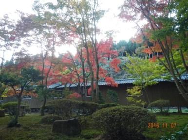 p_saburoukou2016_002
