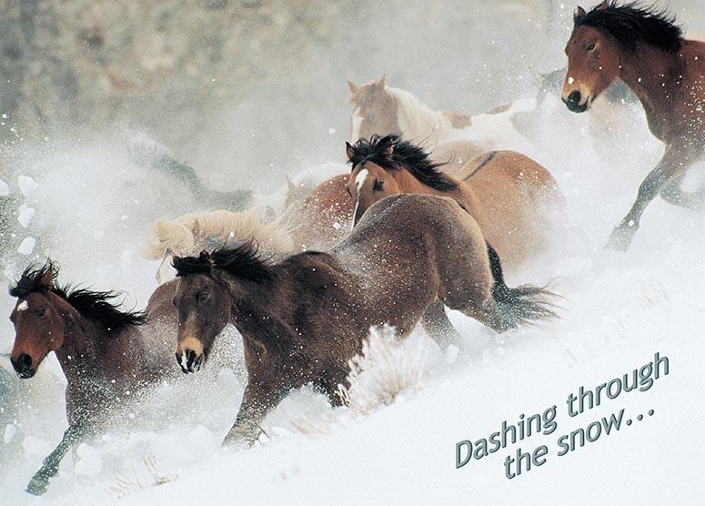 Dashing Through The Snow Card Wwwhoofprintscom