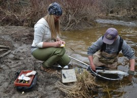Two Decades of Steelhead Research