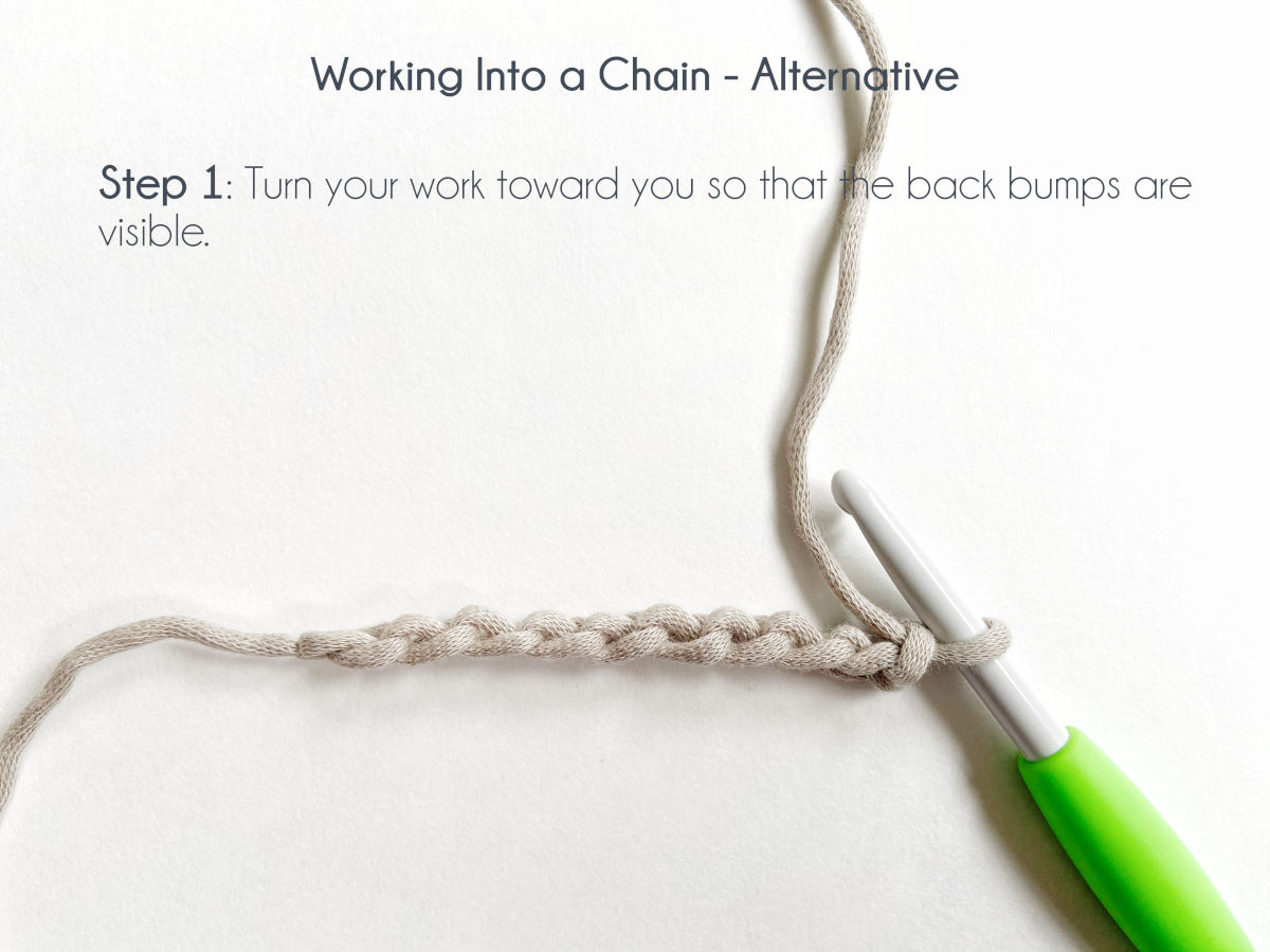 """""""Working Into a Chain - Alternative; Step 1: turn your work toward you so that the back bumps are visible."""" A row of 11 chains lay in an upside down side view, exposing the back bumps of the stitches."""