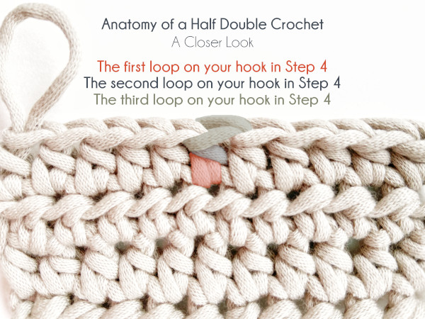 """""""Anatomy of a Half Double Crochet"""" Photo shows a taupe colored swatch of half double crochet tilted towards the viewer slightly to show the tops and bodies of the stitches. Text on the photo labels """"The first loop on your hook in Step 4"""" in orange with the corresponding anatomical location highlighted in orange on a middle stitch in the top row of the swatch. Similarly, a blue segment of the same stitch is highlighted in blue with text identifying it as 'The second loop on your hook in Step 4"""" and a segment of the stitch highlighted in green is identified by the green text """"The third loop on your hook in Step 4."""""""