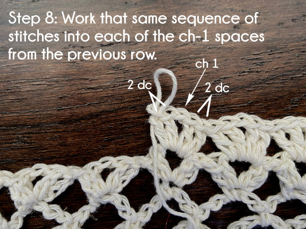 Text: Step 8: Work that same sequence of stitches into each of the chain-1 spaces from the previous row.