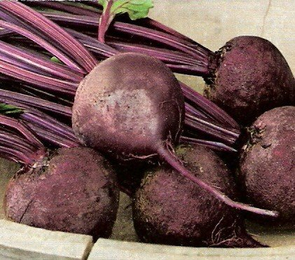 Beets: Detroit Dark Red