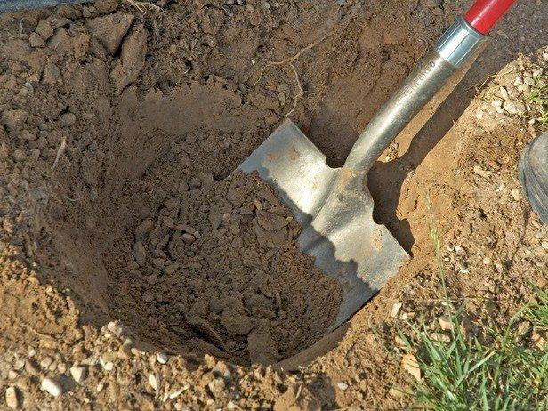 shove and dirt