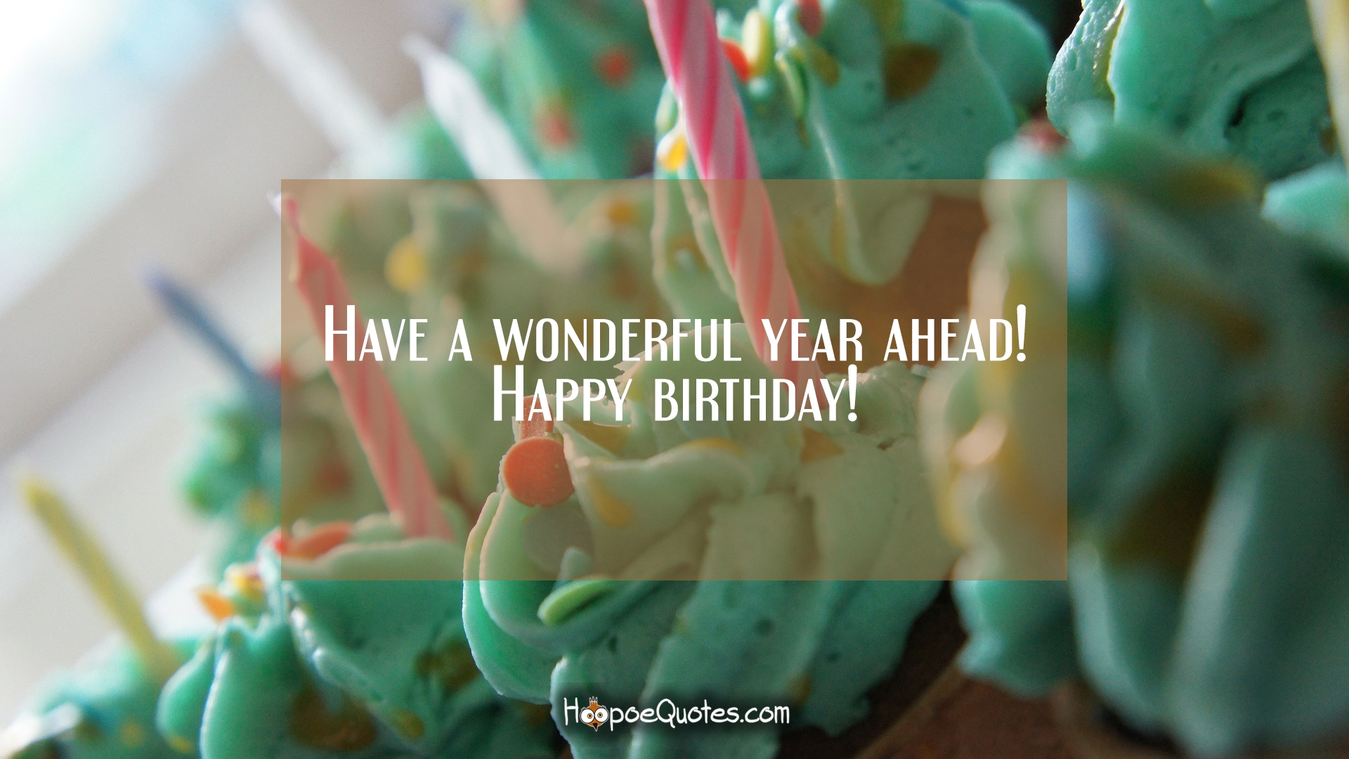 Have A Wonderful Year Ahead Happy Birthday HoopoeQuotes