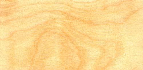 Birch Vs Maple Grain