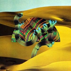 django-django-album-cover-300x300 Django Django - Django Django