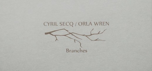 Cyril Secq Orla Wren branches