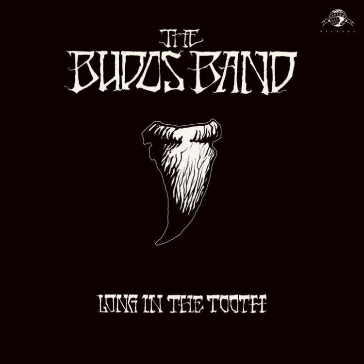 "budos-band-long-in-the-tooth ""Long in the Tooth"" : le son toujours aussi addictif de The Budos Band"