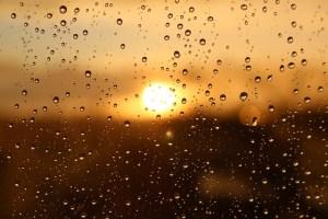 Die Sonne kommt hinter Regentropfen hervor - Hope and Shine - Die pure Lust am Leben