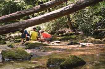 Laurel Fork Creek and kids playing