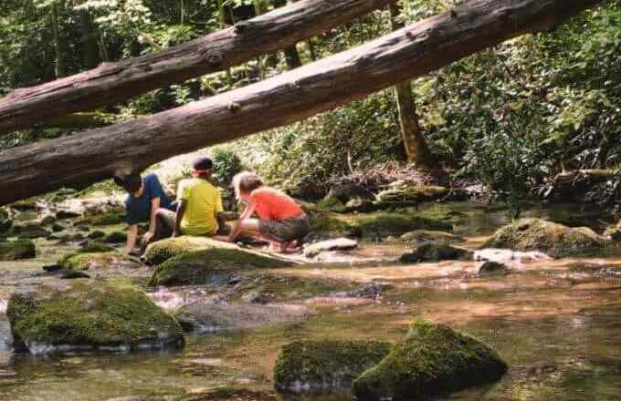 How to Keep Your Kids Safe on a Hike