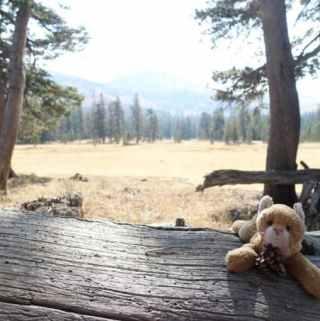 Tahoe Rim Trail–Day 3