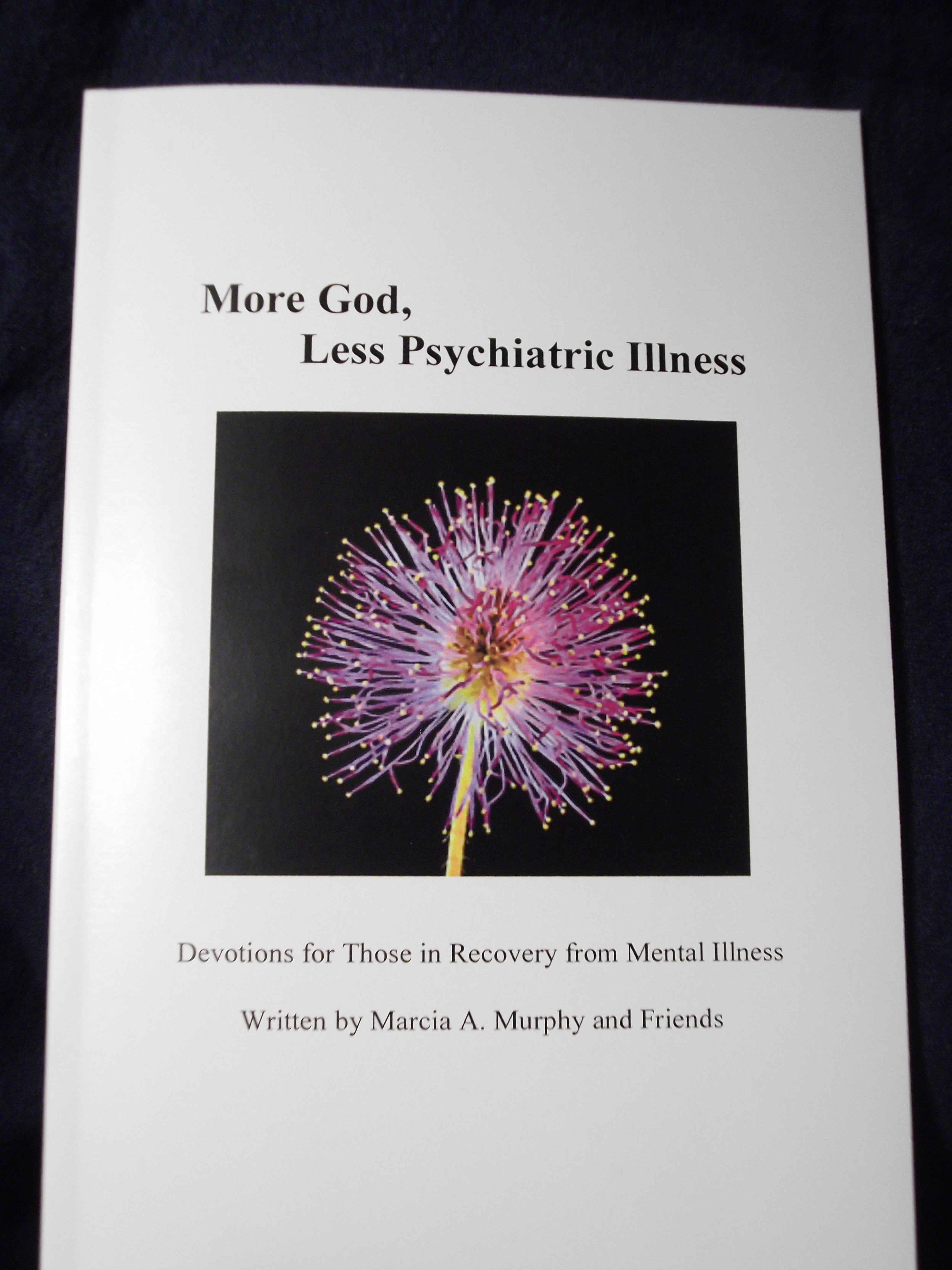 Preview Of Booklet More God Less Psychiatric Illness