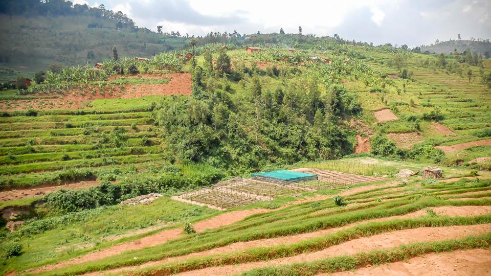 HopeForTomorrowGlobal-Rwanda Nyanza plantations-960