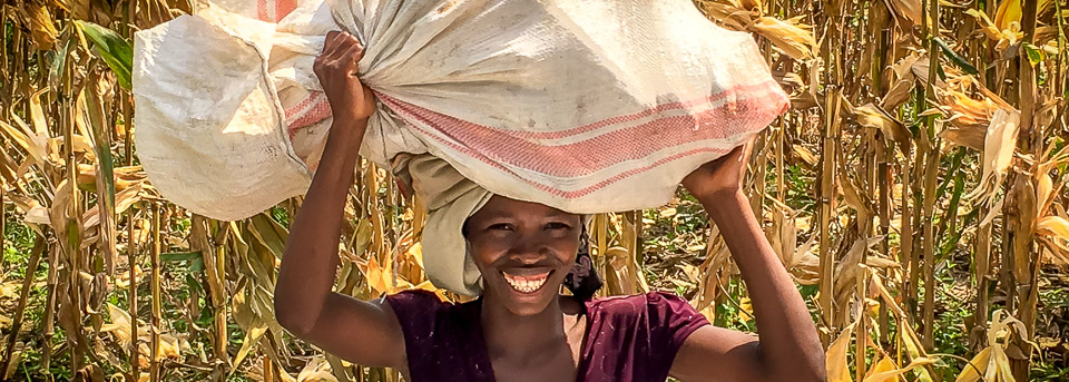 Farmer carrying a sack of maize on her head