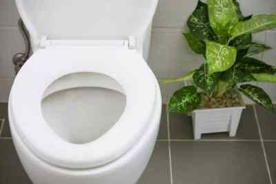 Natural recipe for cleaning your toilet without chemicals