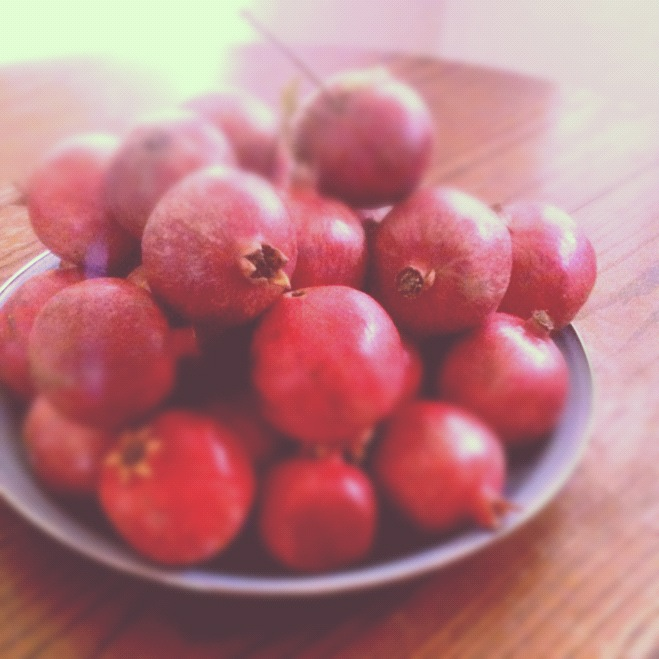 Ruby Red Pomegranates