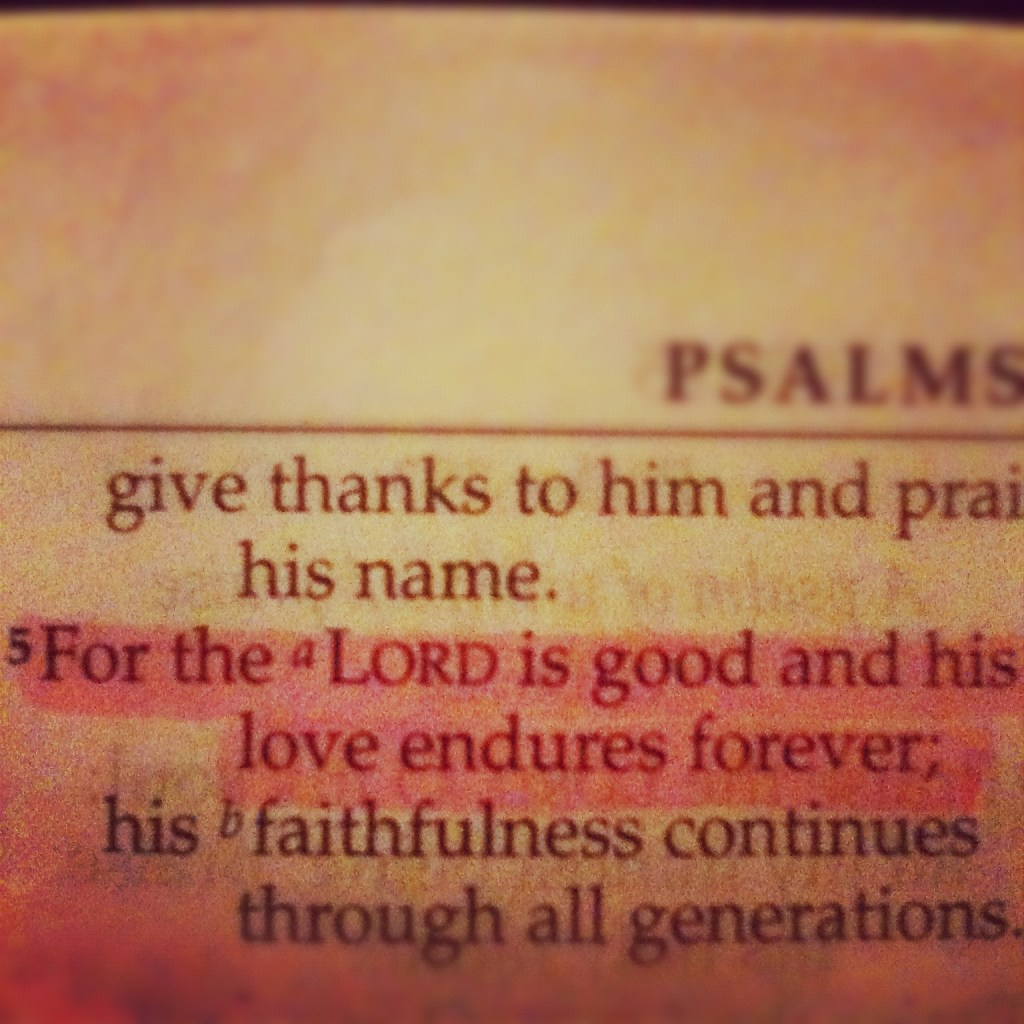 Psalm 101:5 scripture page highlighte<code srcset=
