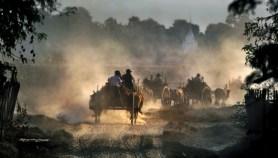 Burmese Wagon Train copy