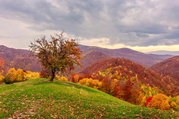 beautiful autumn landscapes