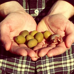 A Prime Number Of Olives album cover