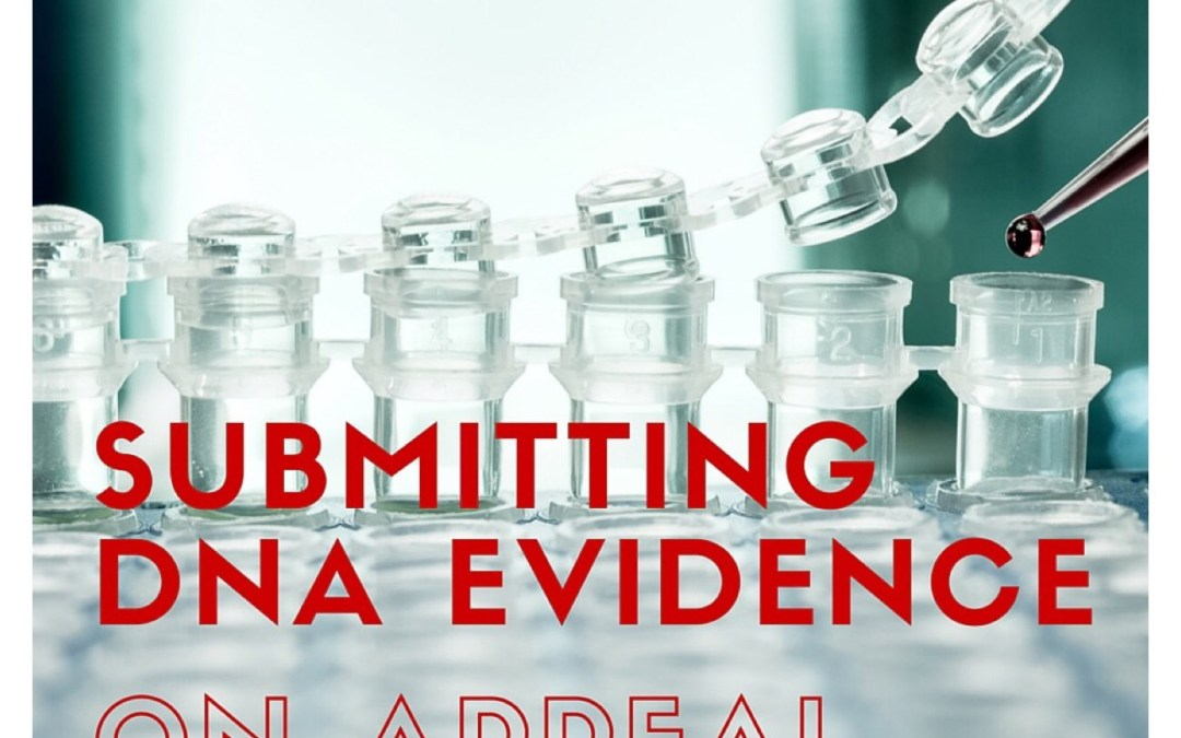 Submitting new DNA evidence on appeal in denied I-130s