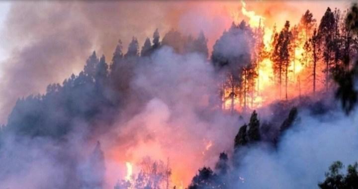 Crece la preocupación por el increíble número de incendios en el Amazonas