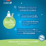 Última semana para postular a los $15 millones de Semilla Inicia
