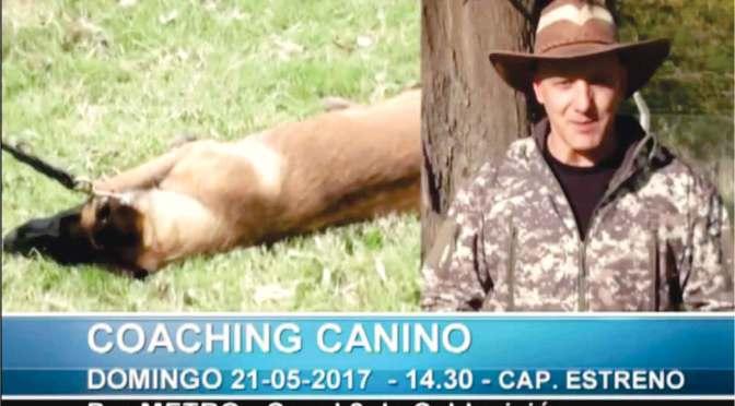 No te pierdas coaching canino, capítulo estreno este domingo