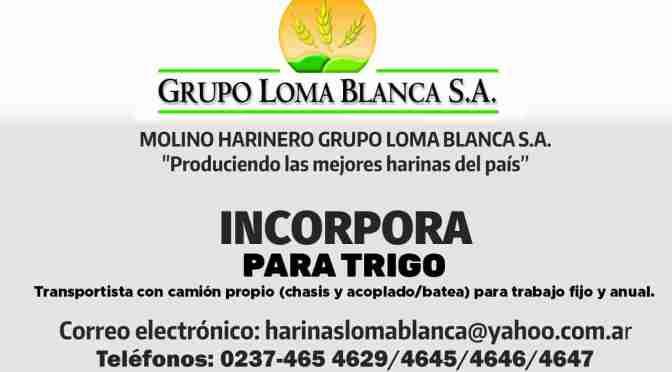 Nueva oportunidad laboral en Harinas Loma Blanca