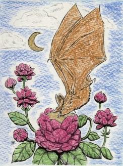 Bat Tea