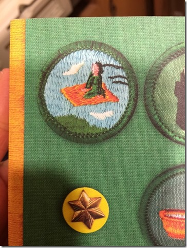 Mystery Girl Scout Badge