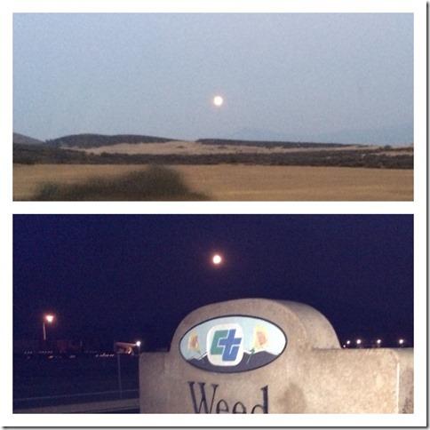 Moonrise at Weed