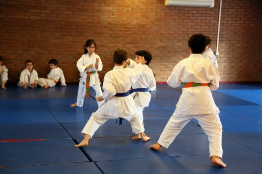 Self-defense Gabriel 1