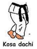 Kosa Dachi
