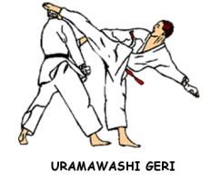 Uramawashi Geri