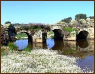 Puente de las Urrietas