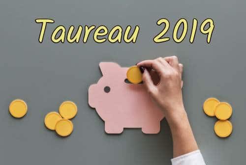 taureau 2019 - le travail et l'argent