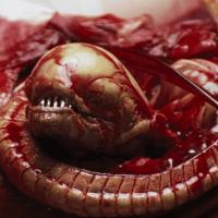 Alien Day 2019: les surprises du jour!