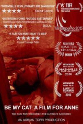 film-for-anne-found-footage